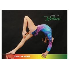 Balance Beam Poster, Laminated
