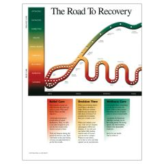 Road to Recovery Inserts - Colour