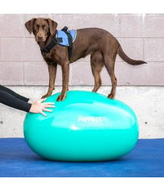 "FitPAWS™ Egg, 65cm (25""H, 32.75""L), Green"