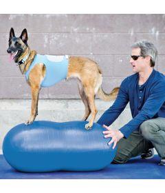 """Ballon Peanut de FitPAWS™, 60cm (23.5""""H, 44""""L), Bleu"""
